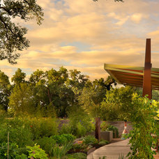 Contemporary Landscape by Strell Design