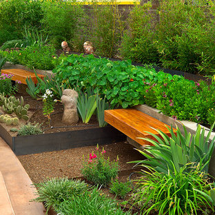 Inspiration for a contemporary raised garden bed in Albuquerque.