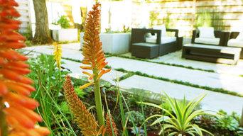 Contemporary Planting