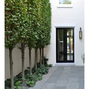 Inspiration for a contemporary landscaping in DC Metro.