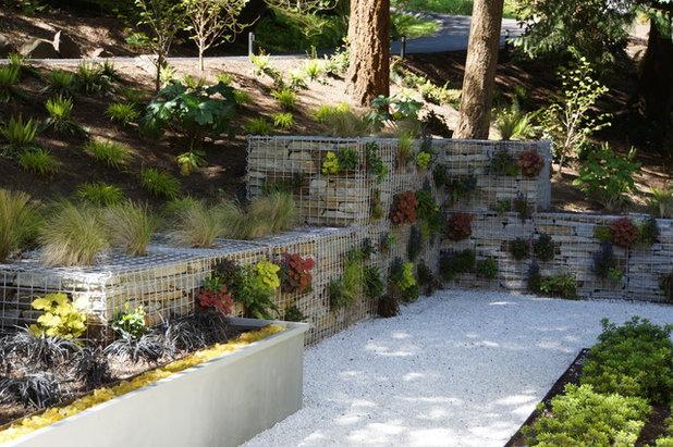Contemporary Garden by Terrain