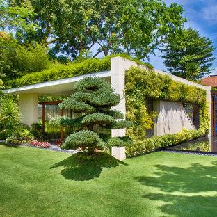 Ispirazione per un giardino tropicale