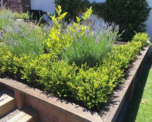 Jardin avec une terrasse en bois ou composite classique for Mur de terrasse en bois