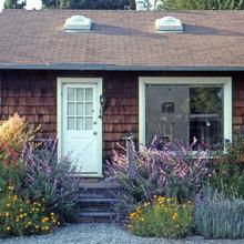 Blue Rose Gardening La Mesa Us 91941