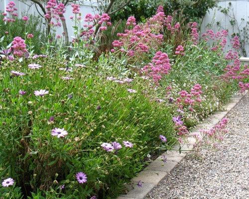 Foto e Idee per Giardini - giardino shabby-chic style con un ...