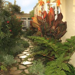 Exemple d'un jardin latéral chic.