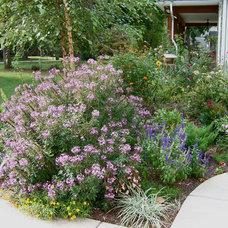 Eclectic Landscape Cottage Gardens