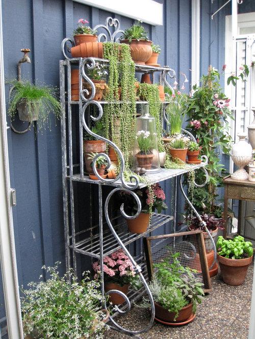 Traditional racks garden design ideas renovations photos for Garden design ideas vancouver