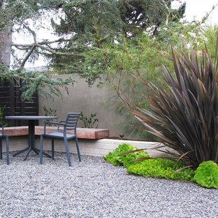 Design ideas for a modern backyard gravel landscaping in San Diego.