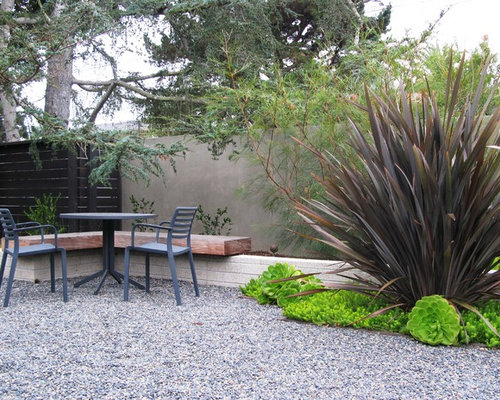 New zealand flax ideas pictures remodel and decor for Garden design nz