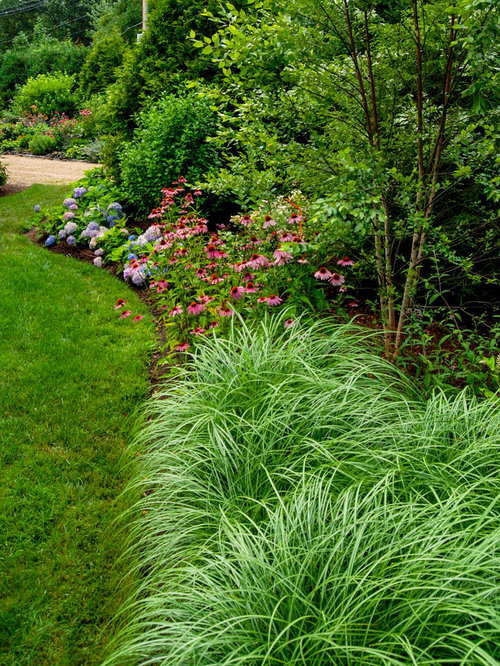 Ornamental grass border design ideas remodel pictures for Tall grass border