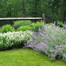Farmhouse Landscape by Austin Ganim Landscape Design, LLC
