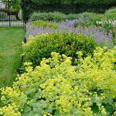 Traditional Landscape by McCullough's Landscape & Nursery