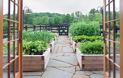 Raised Beds for Every Garden Style