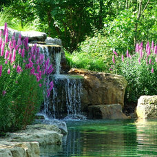 Traditional Landscape by Fullmer's Landscaping, Inc