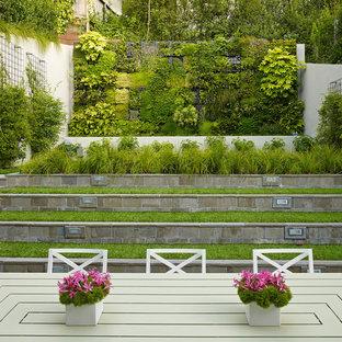 Foto de jardín actual con jardín vertical