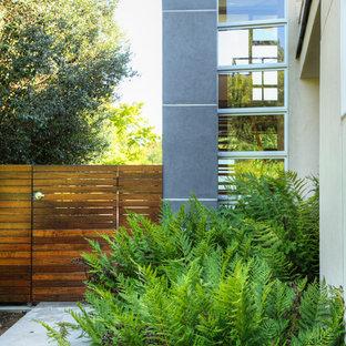 Imagen de jardín moderno en patio lateral