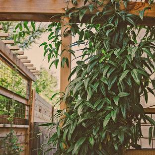Craftsman-Style Cedar Vine Arbor @ Sideyard Walkway