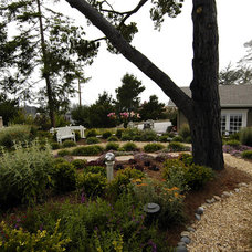 Traditional Landscape by Sage Ecological Landscapes and Nursery