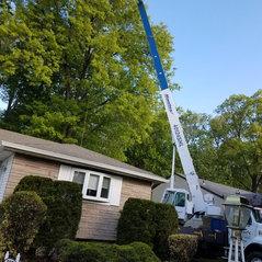 O Brothers Tree Service Llc Bergenfield Nj Us 07621