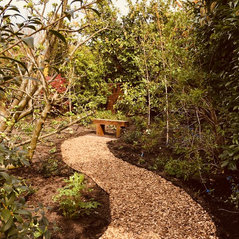 Creating a revitalised and edible garden