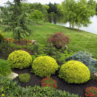 Shade Garden Ball Topiary Landscaping Ideas Houzz