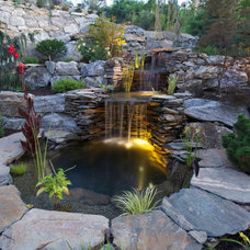 Contemporary Landscape by Creative Roots Landscaping