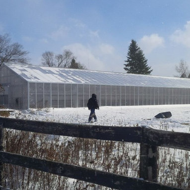 Cross Country Greenhouses -