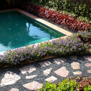 バルセロナの地中海スタイルのおしゃれな庭 (ゼリスケープ) の写真