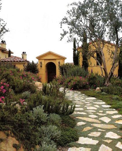 Mediterranean Landscape by David Pedersen, Inc.