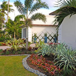 Inspiration for a mid-sized tropical partial sun front yard landscaping in Miami.