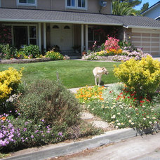 Eclectic Landscape by KL Designs Residential Landscape Planning LLC