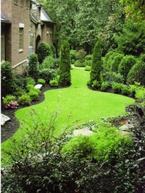 Emerald green arborvitae houzz for Arborvitae garden designs