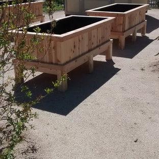 Idee per un grande giardino formale moderno esposto in pieno sole dietro casa in primavera con un giardino in vaso e ghiaia