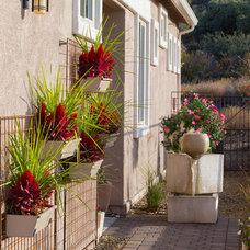 Transitional Landscape by Dorn Homes