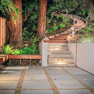 Immagine di un grande giardino formale minimal con un pendio, una collina o una riva e pavimentazioni in cemento