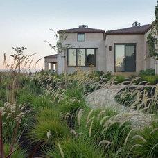 Contemporary Landscape by Thuilot Associates