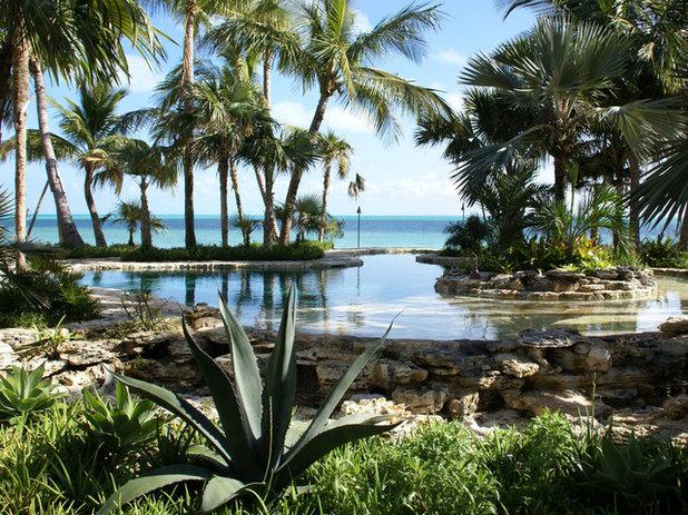 Tropicale Giardino by Raymond Jungles, Inc.