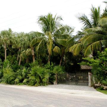 Davids Garden