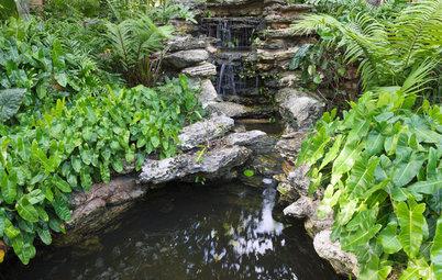 Recipe for Tropical Edible Garden Style