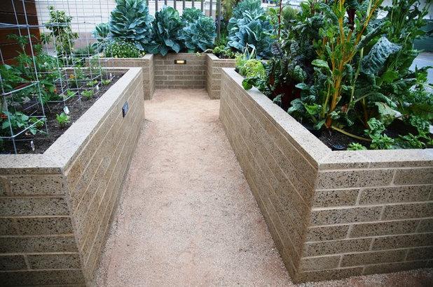 Contemporary Garden by debora carl landscape design