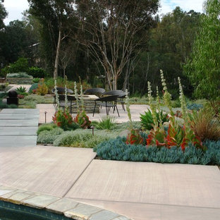 This is an example of a contemporary backyard landscaping in San Diego.