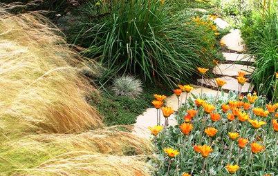 Come Avere un Giardino Bucolico Colorato che Piacerebbe a Monet
