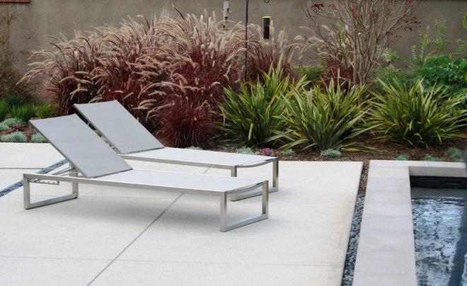 Great Design Plant Purple Fountain Grass