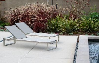 Great Design Plant: Purple Fountain Grass