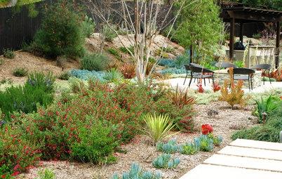 Conseils de pro pour associer vos plantes au jardin for Amenager son jardin en provence