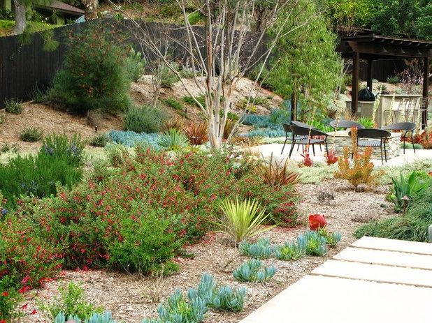 Contemporain Jardin by debora carl landscape design