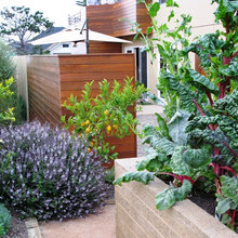 10 Beautiful Edibles to Add to Your Garden