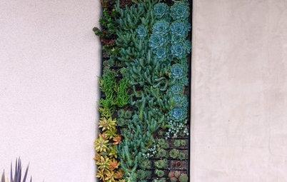 3 Fuss-Free Ways to Garden