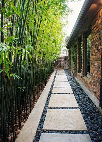 Modern Garden by Outer Image Design